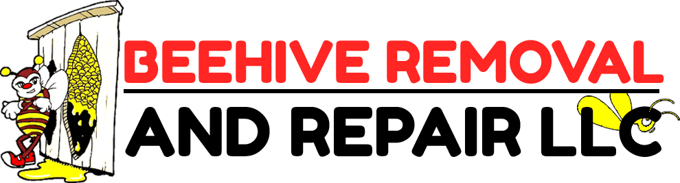Beehive Removal and Repair LLC